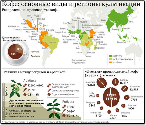 различия между арабикой и робустой инфографика