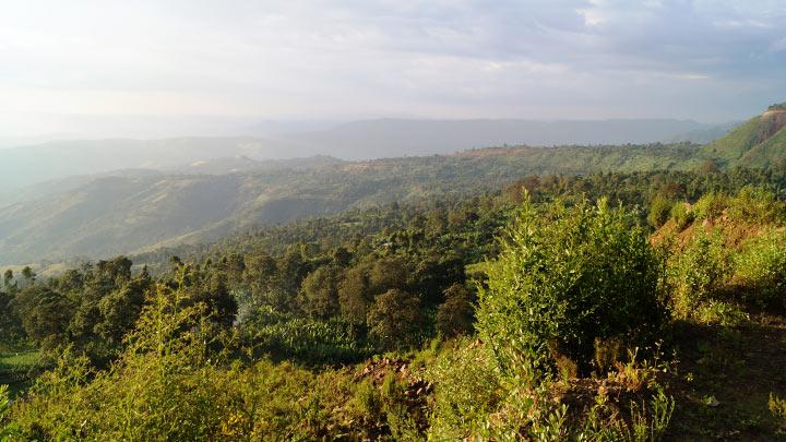 Горы в Эфиопии